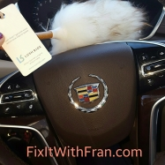 Daily Dusting on FixItWithFran.com