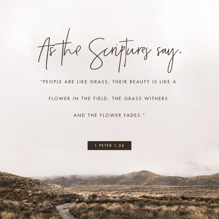 November 13, 2017 Verse of The Day - 1 Peter 1:24
