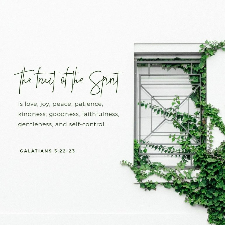 Image result for galatians 5:22 youversion image