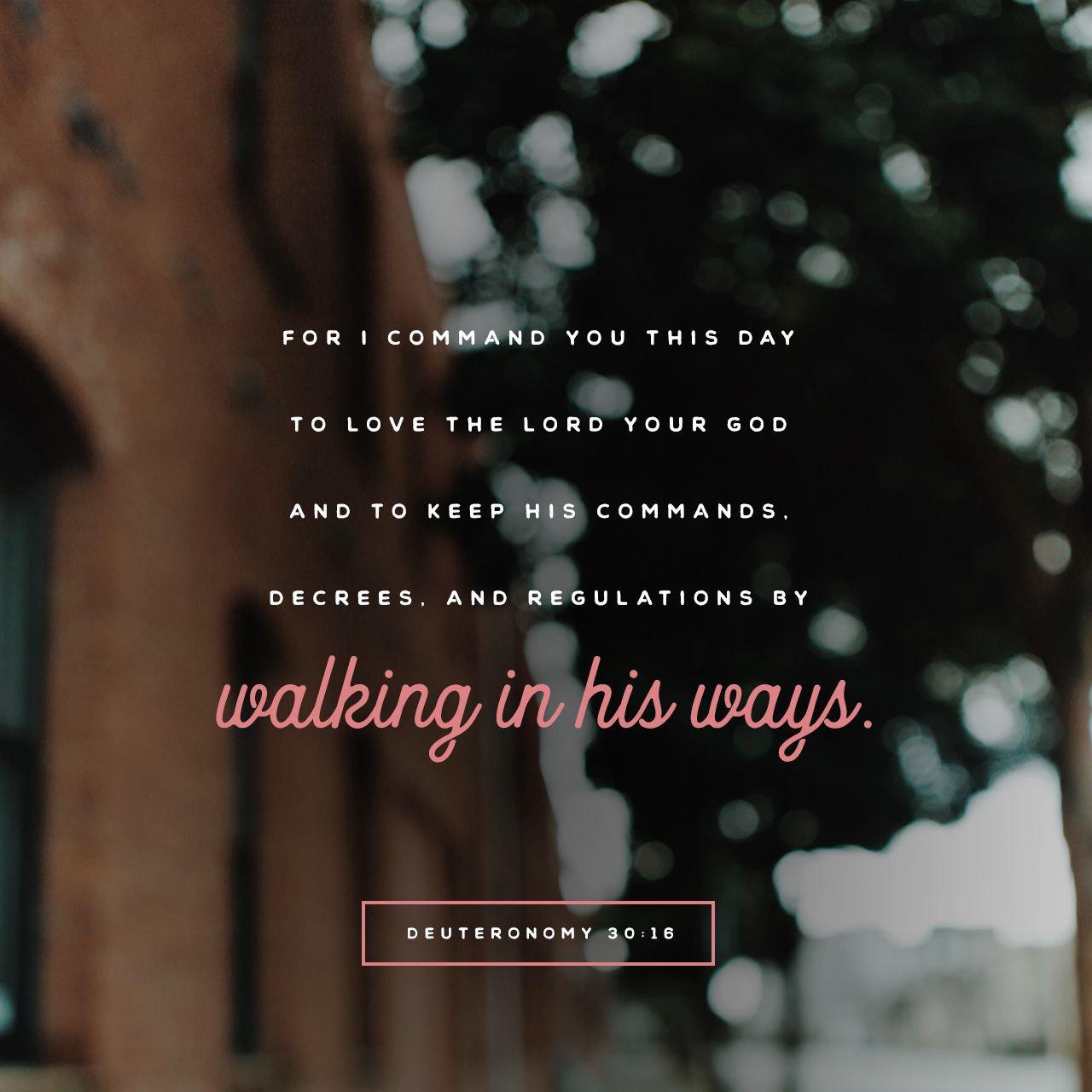 Deuteronomy 30:16